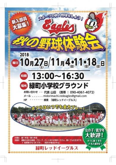 秋の野球体験会開催!